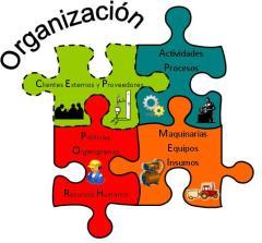 Organización_3